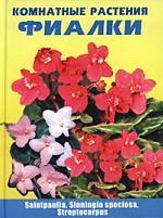 Комнатные растения. Фиалки: сенполия/saintpaulia, синнингия/sinningia speciosa, стрептокарпус/streptocarpus