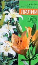 Лилии: Практическое пособие по выбору сортов, выращиванию, размножению, защите от болезней и вредителей