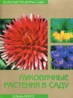 Луковичные растения в саду
