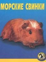 Морские свинки