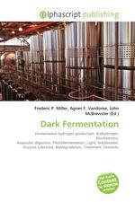 Dark Fermentation