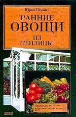 Ранние овощи из теплицы