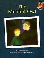 The Moonlit Owl