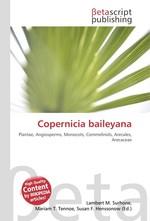 Copernicia baileyana