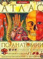 Иллюстрированный энциклопедический атлас по анатомии