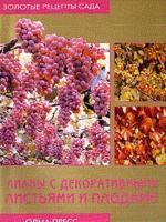 Лианы с декоративными листьями и плодами