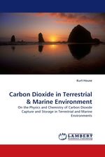 Carbon Dioxide in Terrestrial. On the Physics and Chemistry of Carbon Dioxide Capture and Storage in Terrestrial and Marine Environments