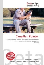 Canadian Pointer