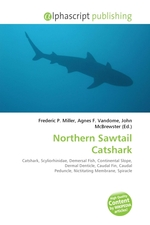 Northern Sawtail Catshark