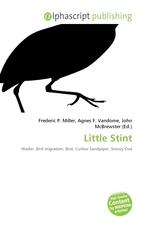 Little Stint