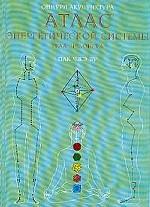 Системы тела человека