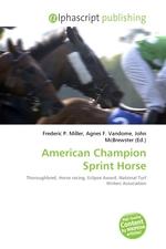 American Champion Sprint Horse