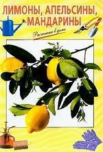 Лимоны, апельсины, мандарины