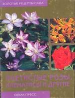 Плетистые розы, клематисы и другие