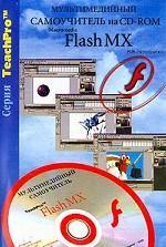 TeachPro Flash MX