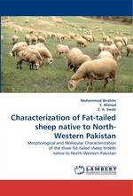 Characterization of Fat-tailed sheep native to North-Western Pakistan. Morphological and Molecular Characterization of the three fat-tailed sheep breeds native to North-Western Pakistan
