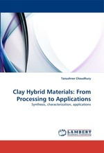 Clay Hybrid Materials: From Processing to Applications. Synthesis, characterization, applications