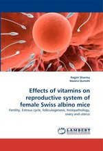 Effects of vitamins on reproductive system of female Swiss albino mice. Fertility, Estrous cycle, folliculogenesis, histopathology, ovary and uterus