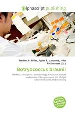 Botryococcus braunii