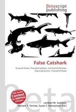 False Catshark