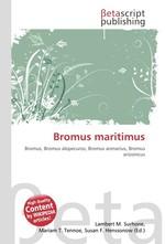 Bromus maritimus