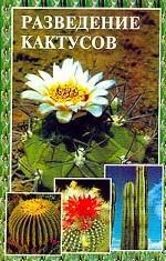 Разведение кактусов