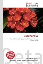 Burchardia
