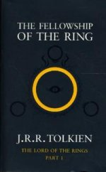 Fellowship of the Ring (part 1)
