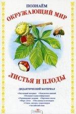 БП. ПАПКА. Листья и плоды