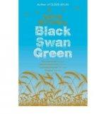 Black Swan Green (UK bestseller)