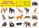 Животные жарких стран. Демонстрационные плакаты