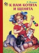 К нам котята и щенята