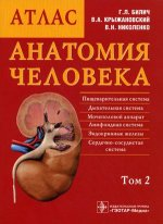 Анатомия человека. Атлас. В 3-х томах. Том 2
