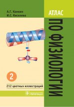 Атлас по физиологии. Учебное пособие. В 2-х томах. Том 2