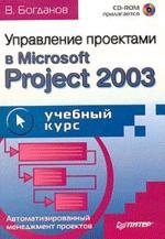 Управление проектами в Microsoft Project 2003 (+CD)