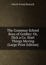 The Grammar School Boys of Gridley: Or, Dick a Co. Start Things Moving (Large Print Edition)