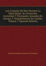 Los Consejos Del Rey Durante La Edad Media: Su Formacin Autoridad Y Principales Acuerdos En Europa, Y Singularmente En Castilla, Volume 1 (Spanish Edition)