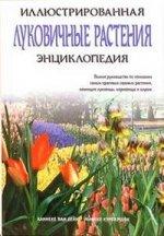 Луковичные растения. Иллюстрированная энциклопедия