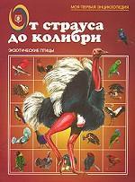 От страуса до колибри. Экзотические птицы