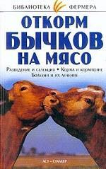 Откорм бычков на мясо