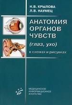 Анатомия органов чувств (глаз, ухо) в схемах и рисунках