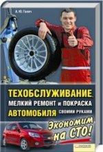 Скачать Техобслуживание, мелкий ремонт и покраска автомобиля своими руками   Галич А бесплатно