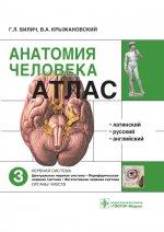 Анатомия человека. Атлас. В трех томах. Том 3. Нервная система