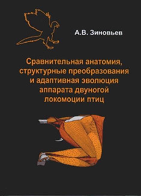 Quaestiones metricae de synaloephae qua Terentius in versibus iambicis et trochaicis usus est ratione microform
