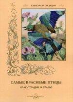А. И. Пантилеева. Самые красивые птицы