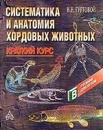 Систематика и анатомия хордовых животных
