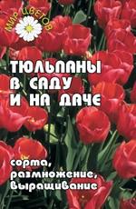 Тюльпаны в саду и на даче