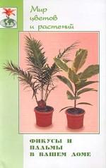 Фикусы и пальмы в вашем доме