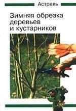 Зимняя обрезка деревьев и кустарников