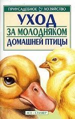 Уход за молодняком домашней птицы